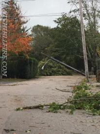 A fallen utility pole blocks the road with live wires attached in front of 41 Foster Cove Road